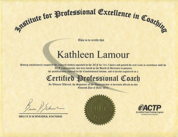 IPEC Certificate (1)