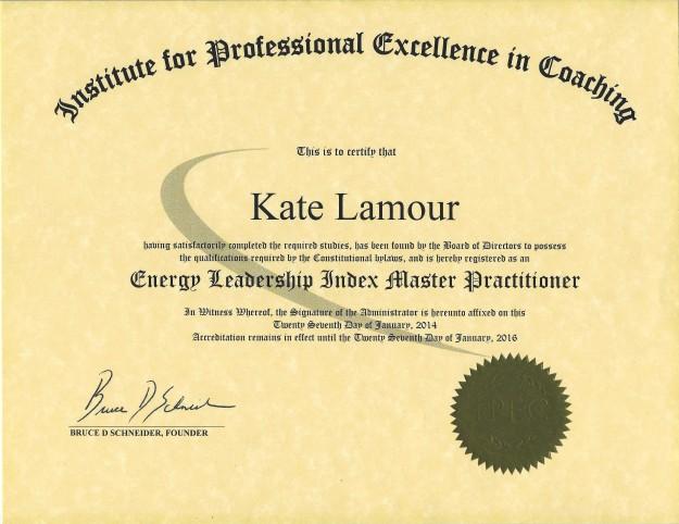 IPEC Energy Certificate (1)